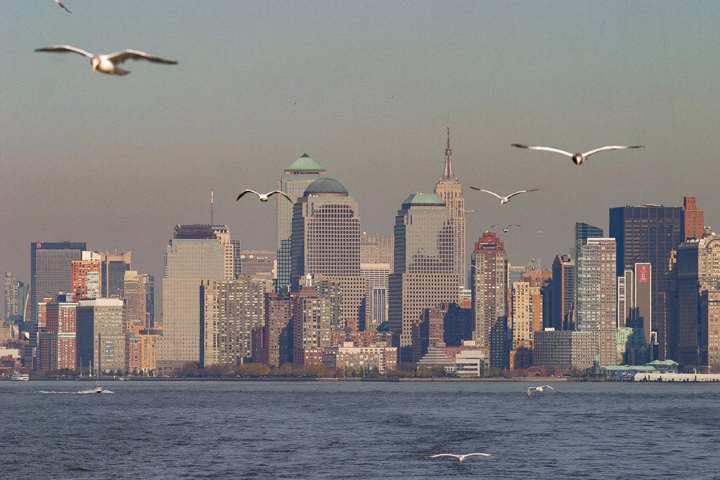 Södra Manhattan, Skyline