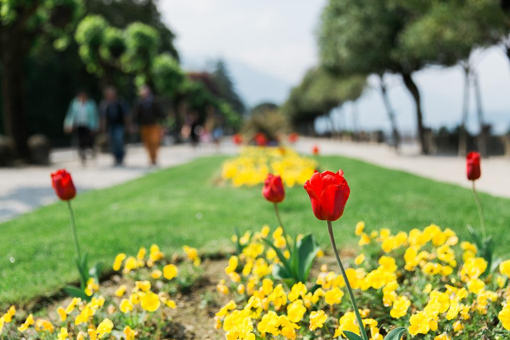 Park, Bellagio