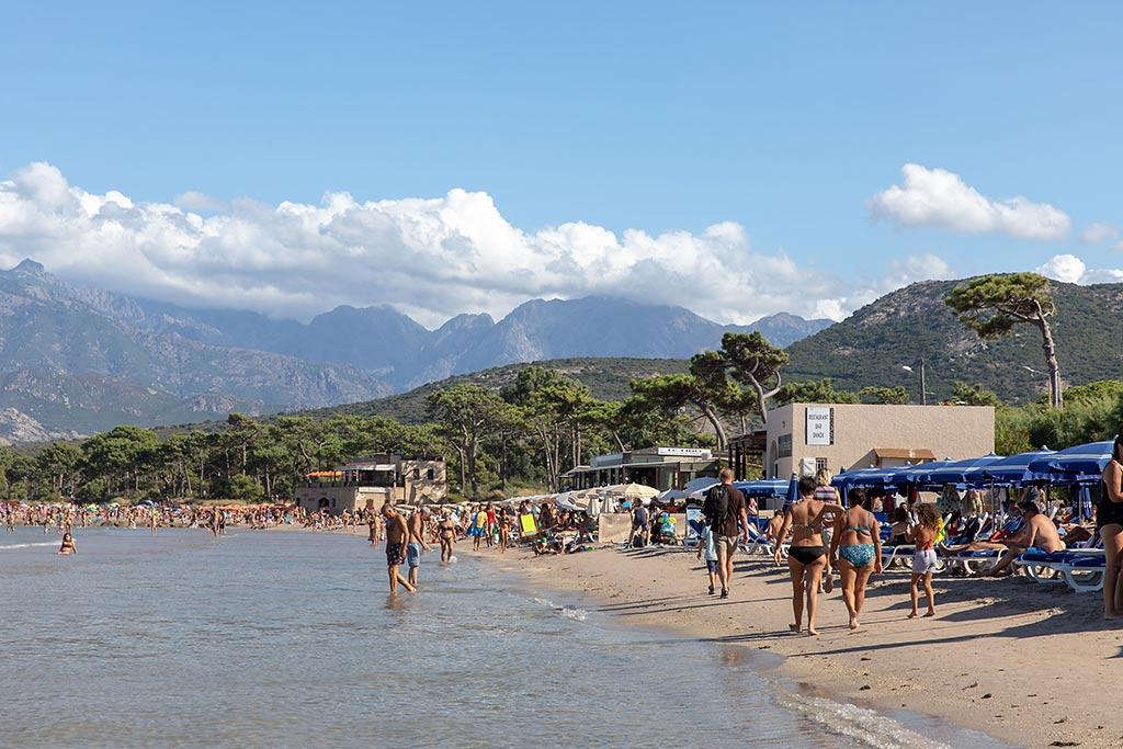 Strandliv i Calvi, Korsika